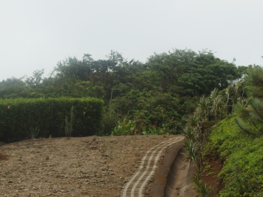 our-road-to-nowhere-costa-rica