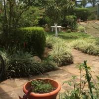 may-showers-brings-costa-rican-flowers
