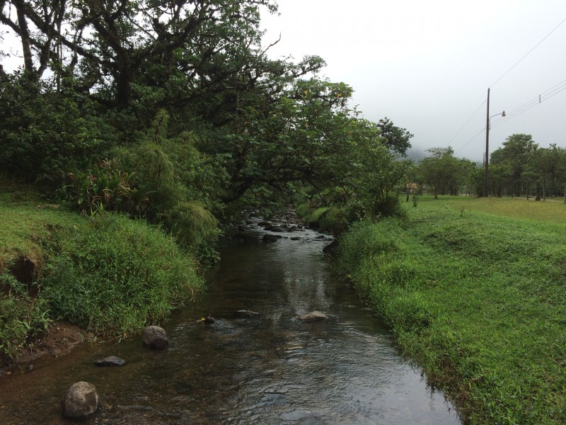 La Paz, its river and its green luch fields are all clean and beautiful.